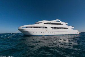 Epic Red sea live aboard med Råå aqua resort och Divingunlimited @ Hurghada